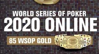 Svenska framgångar i WSOP online
